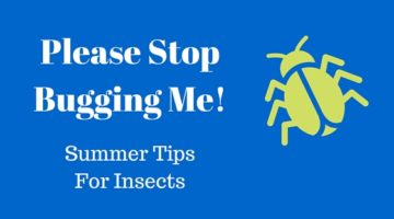 Stop Bugging Me- Tips for Summer Fun With No Bug Bites
