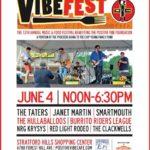 Positive Vibe – Vibe Fest