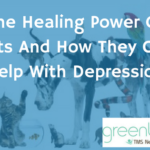 The Healing Power Of Pets And How They Can Help With Depression