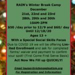 RAIN Winter Camp
